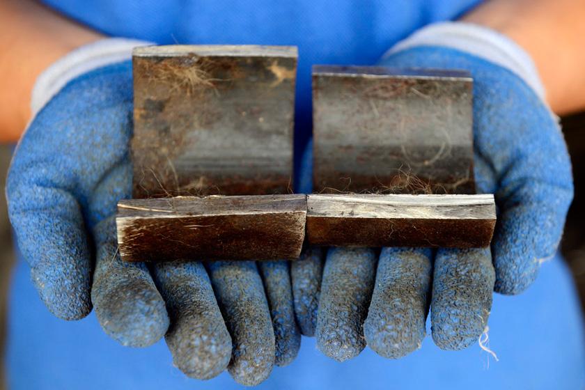 9月11日,消防人员取下的钢圈。   HuYuanjia/CFP_流浪狗疑遭虐待 脖子上套2斤重钢圈