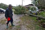日本强台风致数十人伤亡