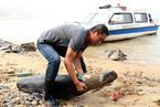 环保部因保护江豚叫停4.8亿元河道工程