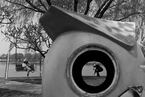 牛光摄影:公园掠影