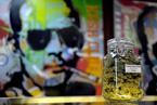 美科罗拉多州大麻合法化引抢购