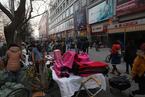 牛光摄影:北京动物园批发市场