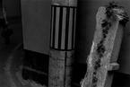 牛光摄影:自然与非自然.