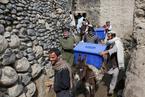 阿富汗今大选 毛驴运送选票箱