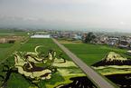 日本农民种出稻田画