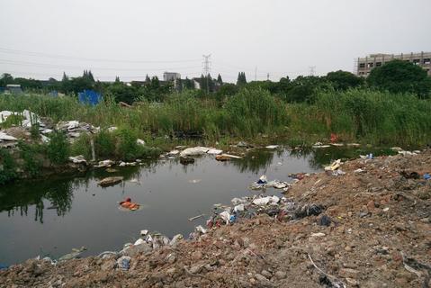 江苏无锡洛社镇兰溪路旁运河沿岸的