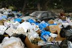 研究:垃圾分类焚烧将减少1/4致癌率