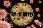 北京现首例寨卡病例 此前国内病患多已治愈