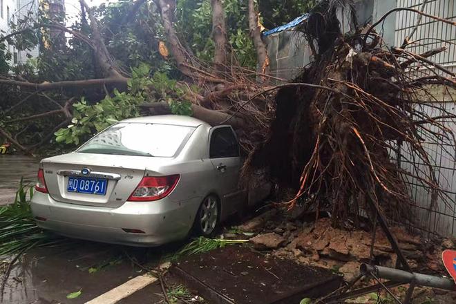 """强台风""""莫兰蒂""""袭击厦门 全市大面积停电断水"""