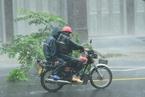 """台风""""莎莉嘉""""登陆在即 海南琼海风狂雨骤"""