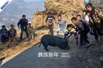 凉山村庄里的彝族新年
