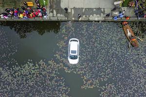 一辆SUV失控冲进川大荷花池