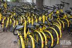 北京拟出台共享单车指导意见  政府调控投放量