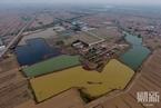 河北等地现十多万平米污水渗坑 环保部联合调查