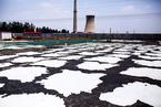 河北无极皮革产业污染严重 危险废弃物随意排放