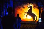 俄罗斯举办灵感艺术节 公园上演唯美灯光展