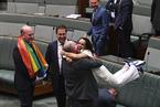 """澳议会通过同性婚姻法案 议员""""开心到飞起"""""""