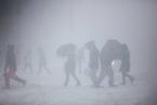 全球极端天气频发 或与北极升温有关
