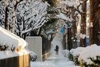 日本迎来今冬最强寒流 多地普降大雪