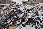 上海迎2018年首场降雪 实拍被雪覆盖的共享单车