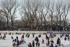 北京连日低温 什刹海游人如织热情不减