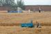 北京最贵麦田开始收割 周边房价每平米超10万元