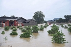 成都蒲江县遇暴雨袭击 道路淹没房屋倒塌