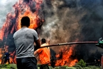希腊森林火灾已致74死 数千人被迫撤离