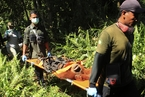 印尼油棕业扩张森林被毁 救援组织转移红毛猩猩