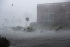"""飓风""""迈克尔""""登陆佛州 屋顶吹飞树木拔起"""