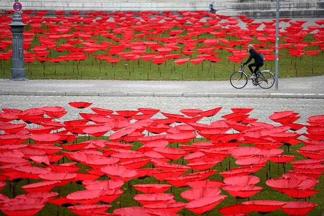 世界各地纪念一战停战百年