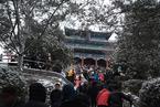 京城迎来猪年首场春雪 景山公园万春亭游客爆满