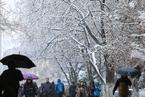 长春、沈阳、哈尔滨降雪 索菲亚教堂显静谧之美