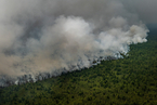 印尼林火继续肆虐 部分省进入紧急状态
