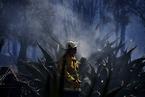 澳大利亚遭遇林火 当地空气质量变差