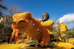 法国芒通年度柠檬节要来了 花样彩车抢先看