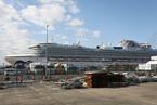 """""""钻石公主""""500名乘客下船 预计2月21日完成全船疏散"""