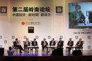 2013年岭南论坛议题:有质量的增长