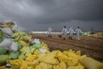 斯里兰卡沉没货船造成严重海洋污染 海滩堆满污染物