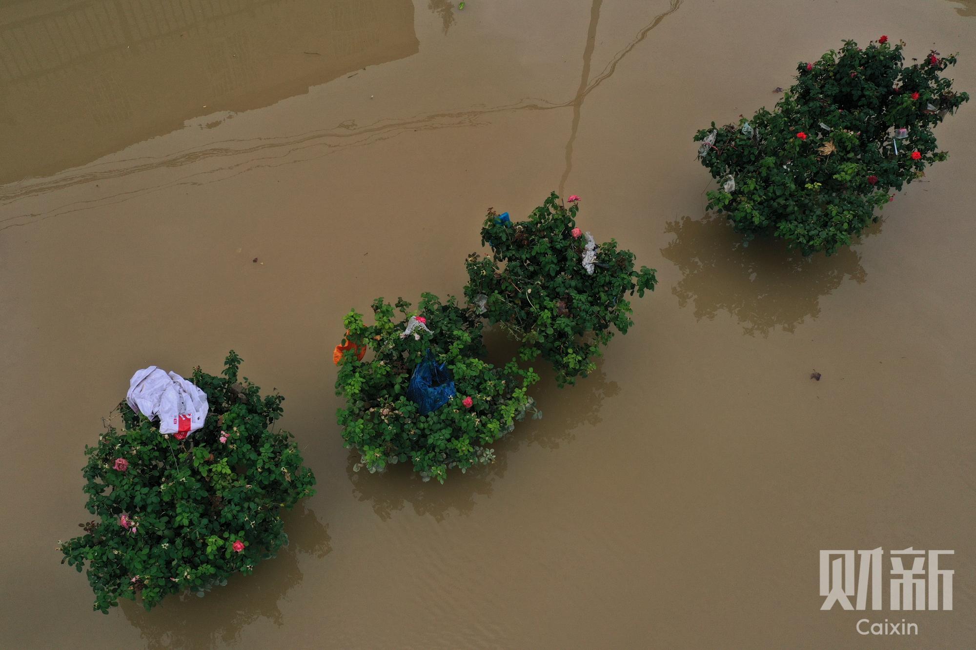 数字说|郑州暴雨这天 他们讲述了自己的遭遇