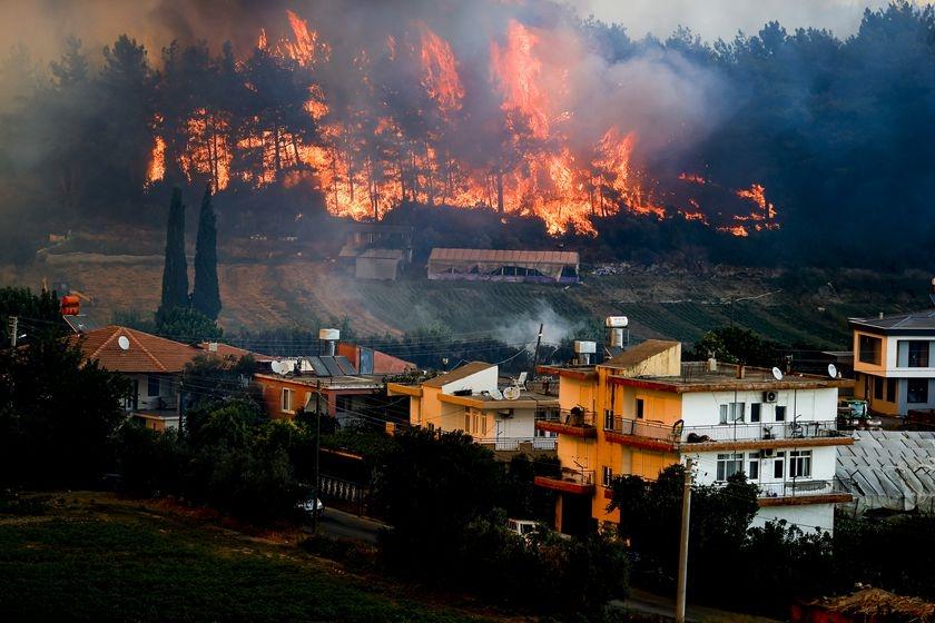 土耳其安塔利亚突发森林大火