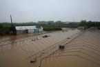 一周天下:湖北暴雨、扬州疫情......