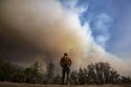 美国加州大火持续肆虐 巨型红杉林面临威胁
